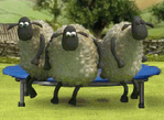 Sheep Games 2