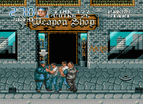 Double Dragon 3 Sega Good