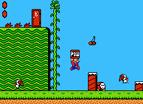Super Mario 2 Usa