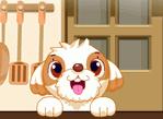 Dog Sushi