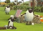 Sheep Games
