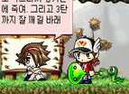 Maplestory Flash 001