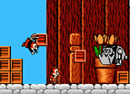 Chip To Dale No Daisakusen Nes Good