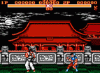 Street Fighter 9 Nes